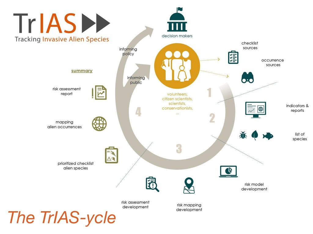 The TrIAS-ycle