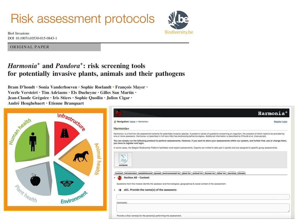 Risk assessment protocols