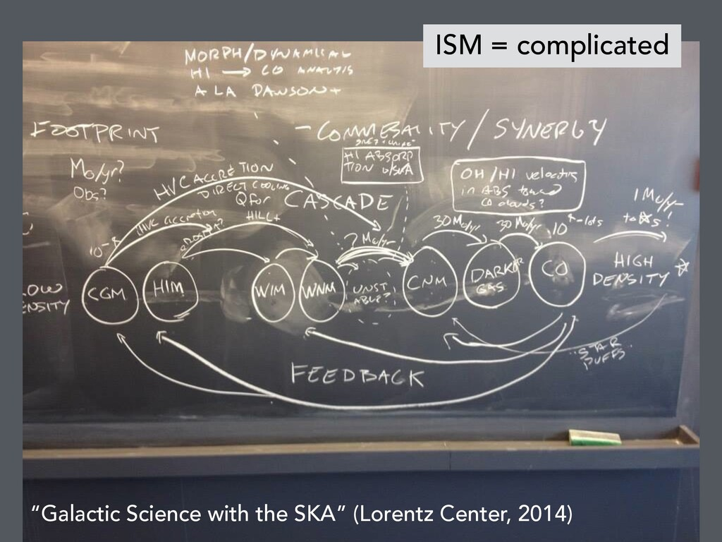 """Galactic Science with the SKA"" (Lorentz Center..."
