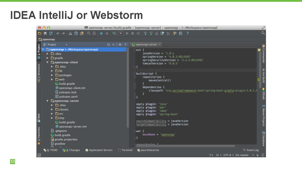 53 IDEA IntelliJ or Webstorm