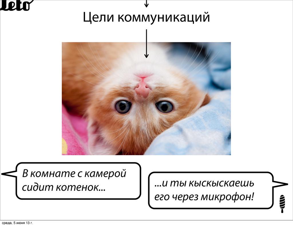 Цели коммуникаций В комнате с камерой сидит кот...