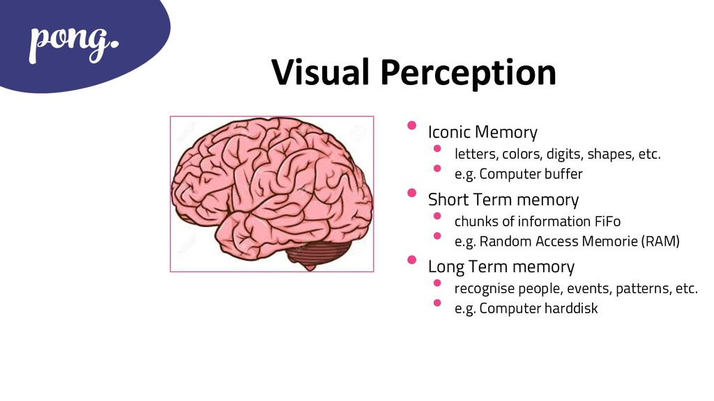 Visual Perception • Iconic Memory • letters, co...