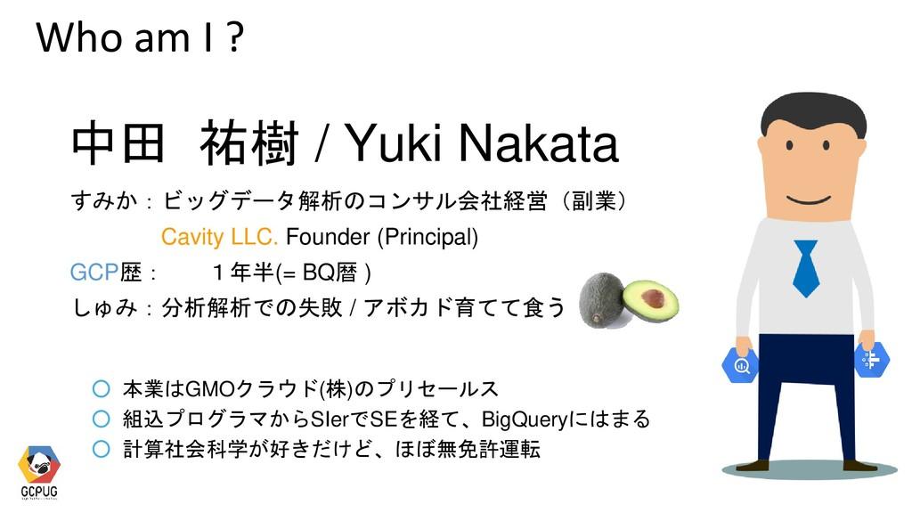 すみか:ビッグデータ解析のコンサル会社経営(副業) Cavity LLC. Founder (...