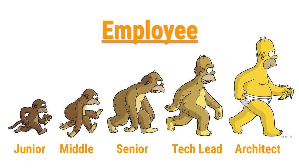 Junior Middle Senior Tech Lead Architect Employ...