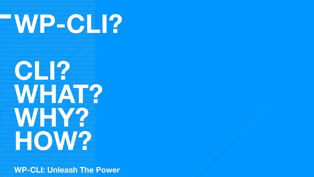 WP-CLI? CLI? WHAT? WHY? HOW? WP-CLI: Unleash Th...
