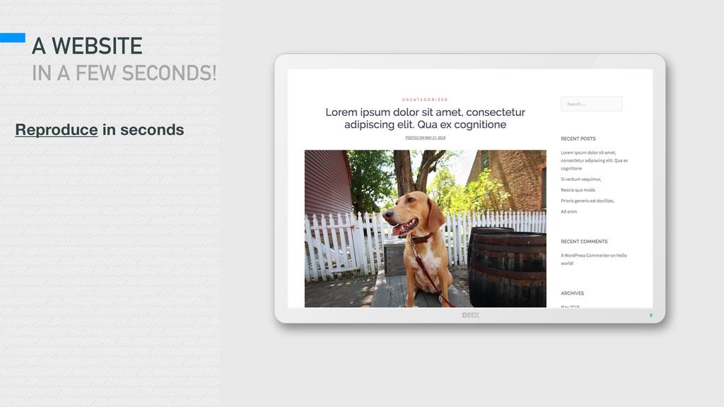 A WEBSITE IN A FEW SECONDS! Reproduce in seconds