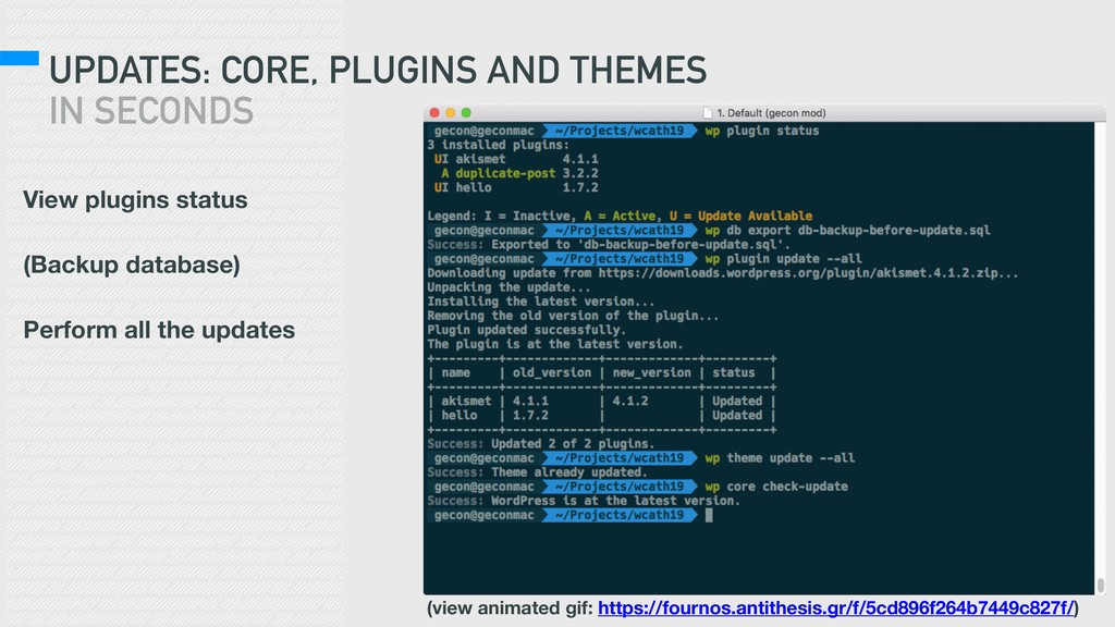 UPDATES: CORE, PLUGINS AND THEMES IN SECONDS Vi...
