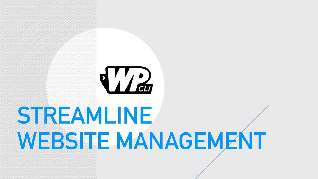 STREAMLINE WEBSITE MANAGEMENT