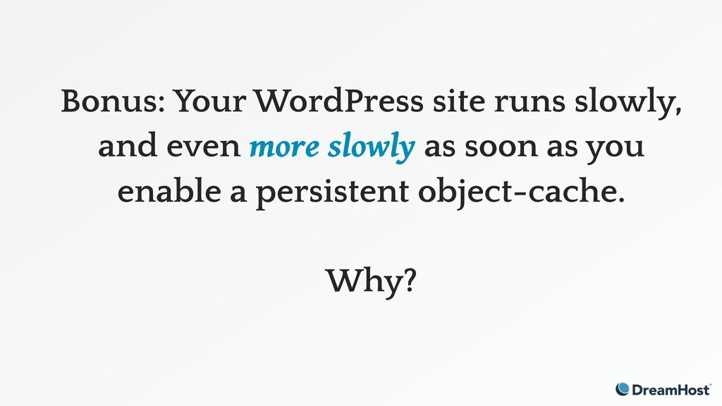 Bonus: Your WordPress site runs slowly, and eve...