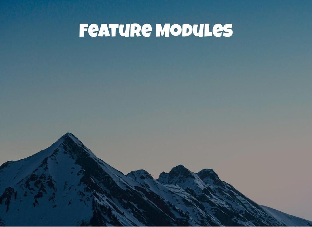 Feature Modules