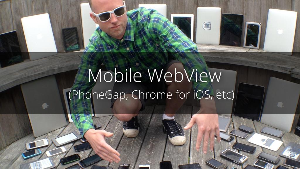 Mobile WebView (PhoneGap, Chrome for iOS, etc)