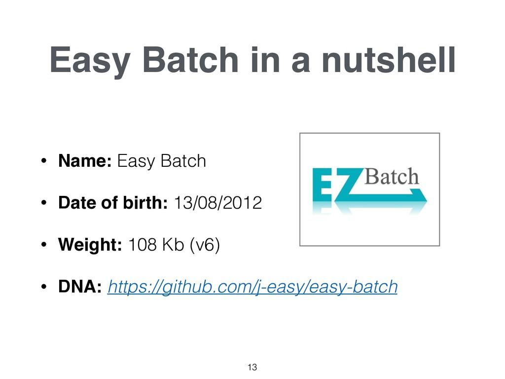 Easy Batch in a nutshell • Name: Easy Batch • D...