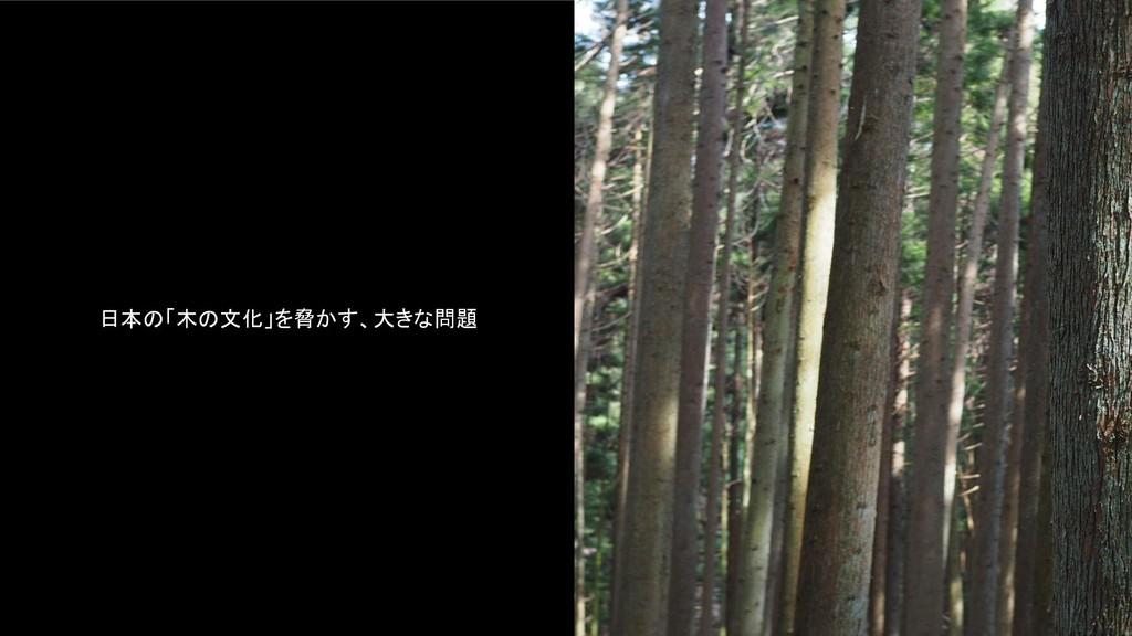 日本の「木の文化」を脅かす、大きな問題