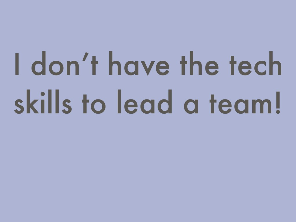 I don't have the tech skills to lead a team!