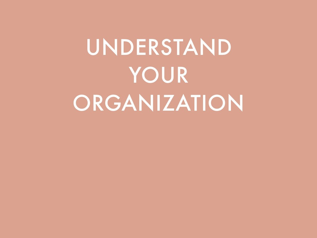 UNDERSTAND YOUR ORGANIZATION