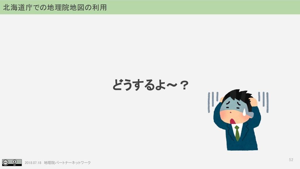 2018.07.18 地理院パートナーネットワーク どうするよ~? 52 北海道庁での地理院地...