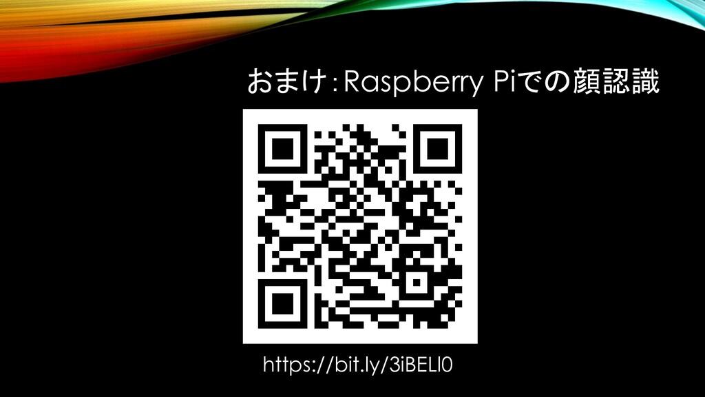 おまけ:Raspberry Piでの顔認識 https://bit.ly/3iBELl0
