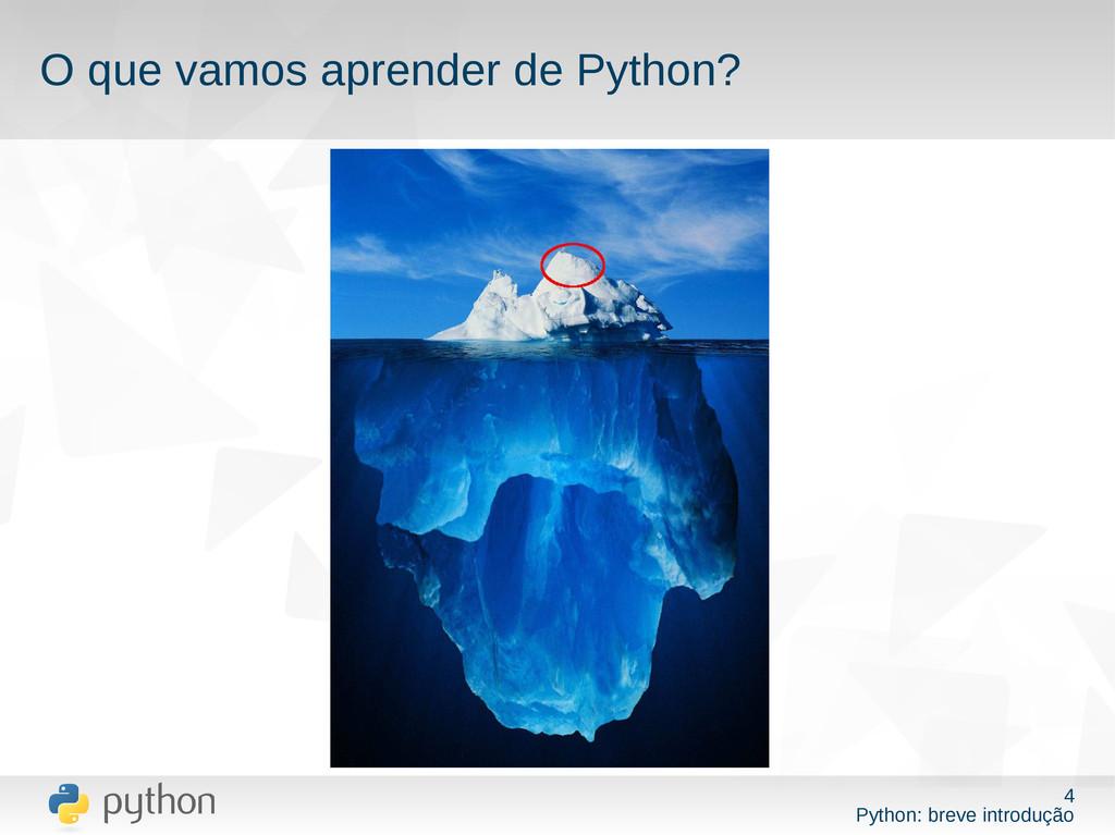 4 Python: breve introdução O que vamos aprender...