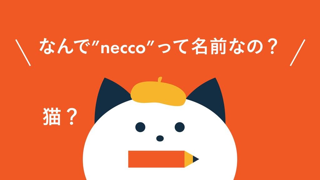 """ͳΜͰ""""necco""""໊ͬͯલͳͷʁ ೣʁ"""