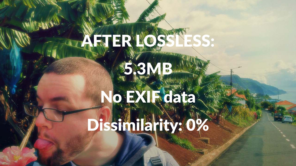 AFTER&LOSSLESS: 5.3MB No#EXIF#data Dissimilarit...