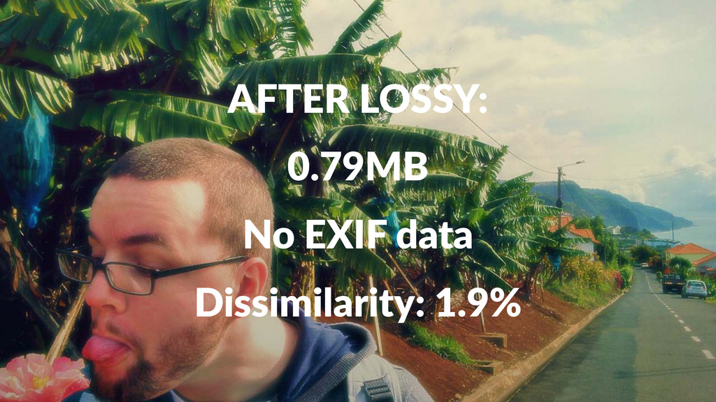 AFTER&LOSSY: 0.79MB No#EXIF#data Dissimilarity:...