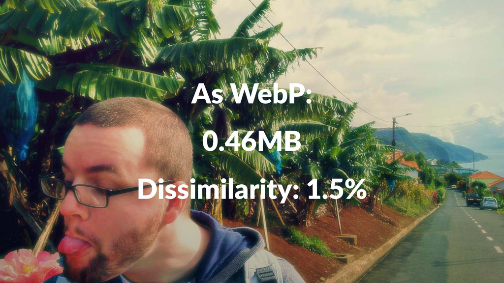 As#WebP: 0.46MB Dissimilarity:+1.5%