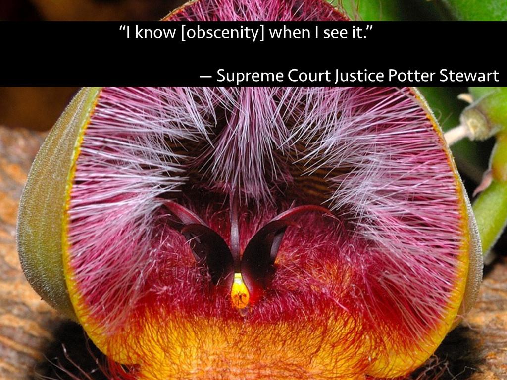 """I know [obscenity] when I see it."" — Supreme C..."