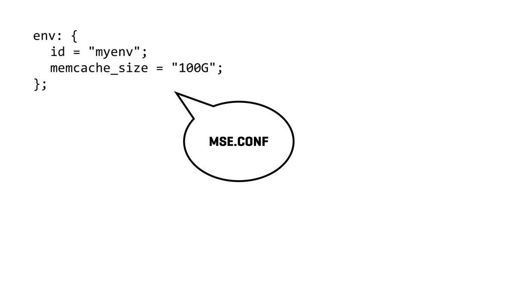 """env: { id = """"myenv""""; memcache_size = """"100G""""; };..."""