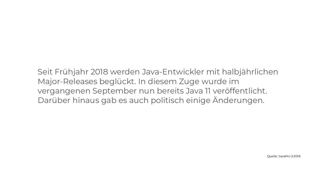 Seit Frühjahr 2018 werden Java-Entwickler mit h...