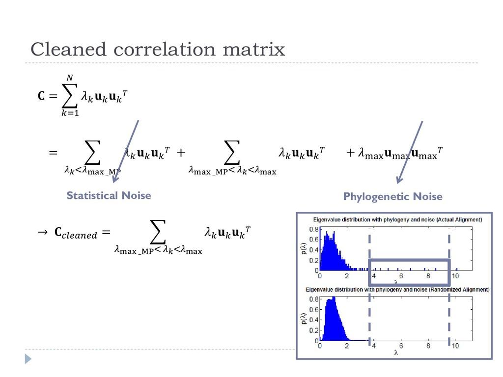 Cleaned correlation matrix Statistical Noise Ph...