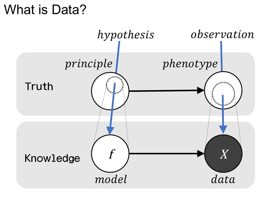 What is Data?   ℎ  f X ℎℎ  Truth Knowledge