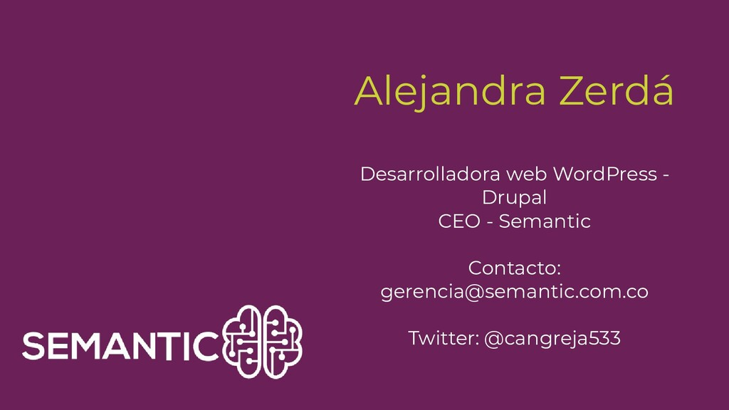 Alejandra Zerdá Desarrolladora web WordPress - ...