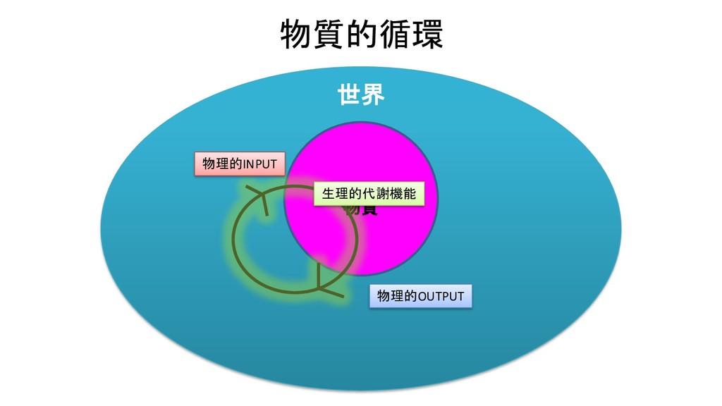 世界 物質的循環 物質 物理的INPUT 物理的OUTPUT 生理的代謝機能