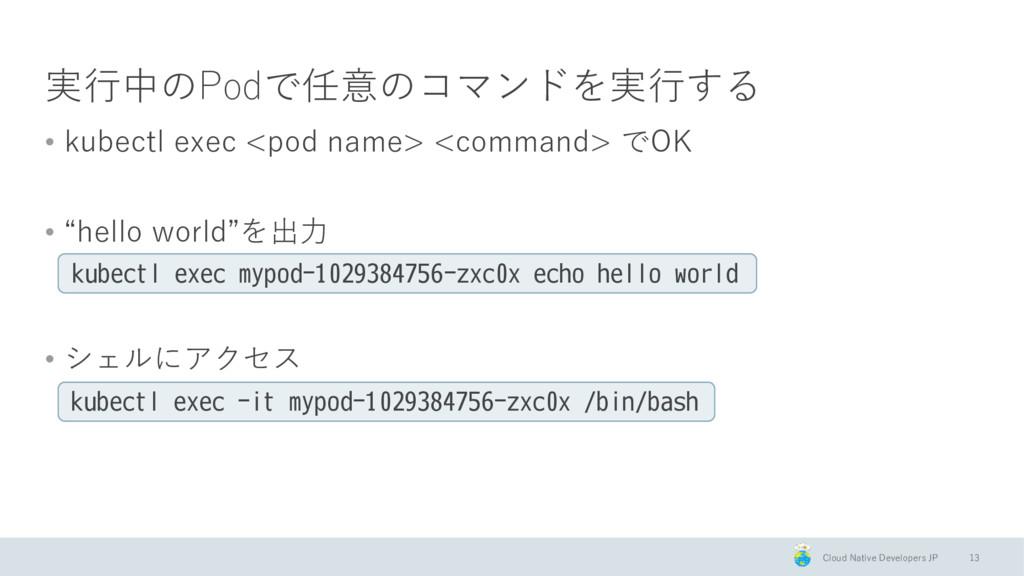 Cloud Native Developers JP 実行中のPodで任意のコマンドを実行する...