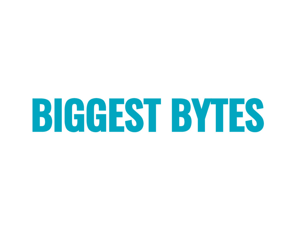BIGGEST BYTES