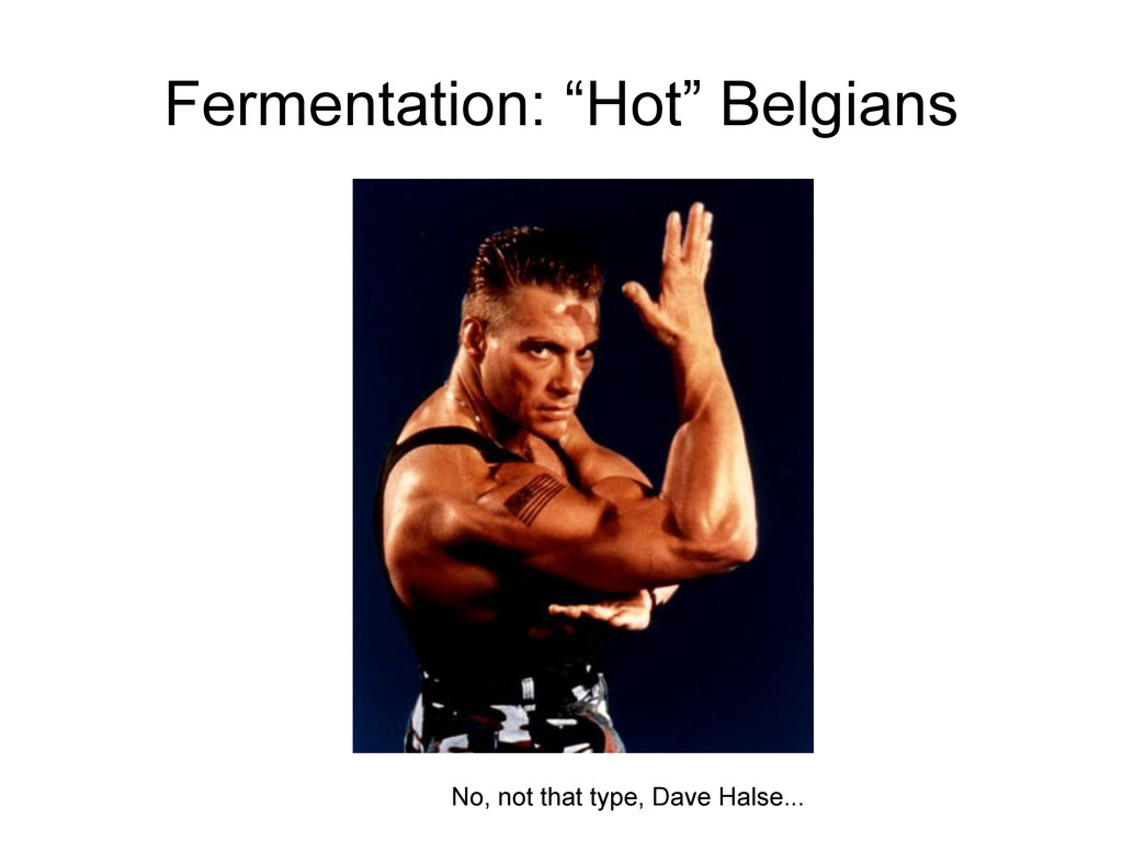 "Fermentation: ""Hot"" Belgians No, not that type,..."