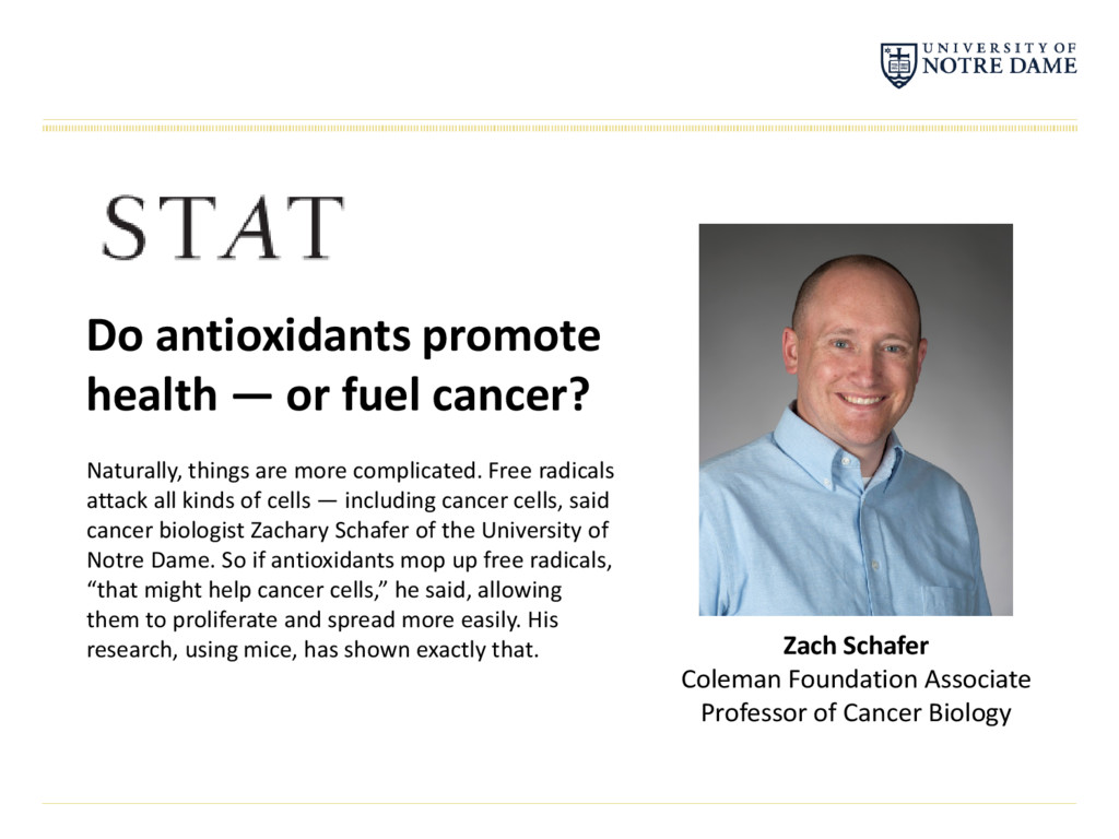 Do antioxidants promote health — or fuel cancer...