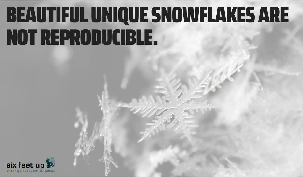 BEAUTIFUL UNIQUE SNOWFLAKES ARE NOT REPRODUCIBL...