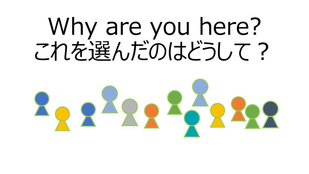 Why are you here? これを選んだのはどうして?
