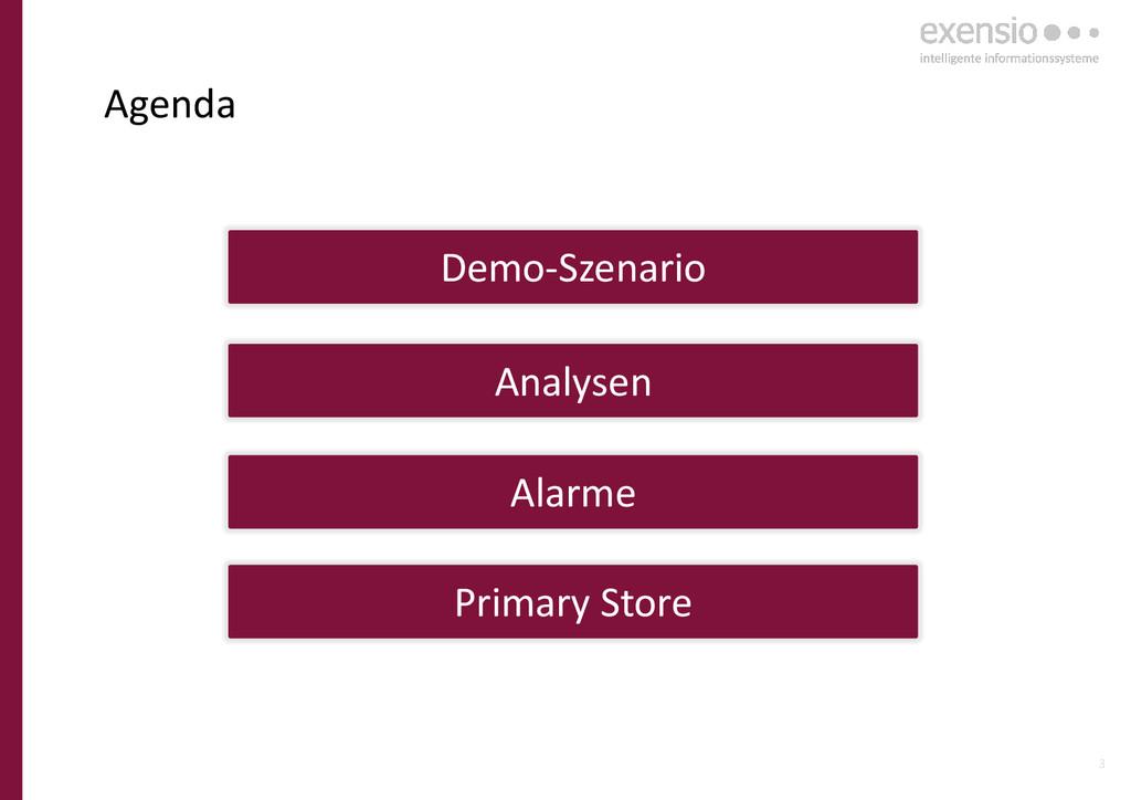 3 Agenda Analysen Alarme Primary Store Demo-Sze...