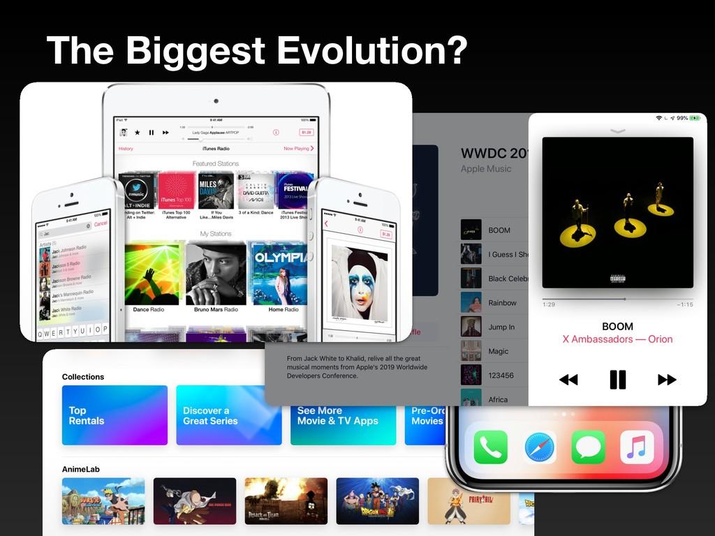 The Biggest Evolution?