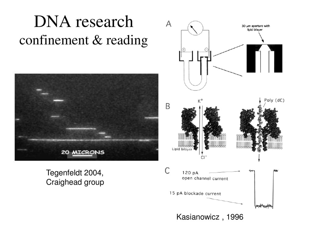 DNA research confinement & reading Tegenfeldt 2...