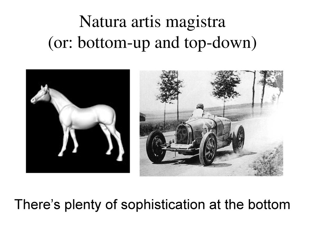 Natura artis magistra (or: bottom-up and top-do...