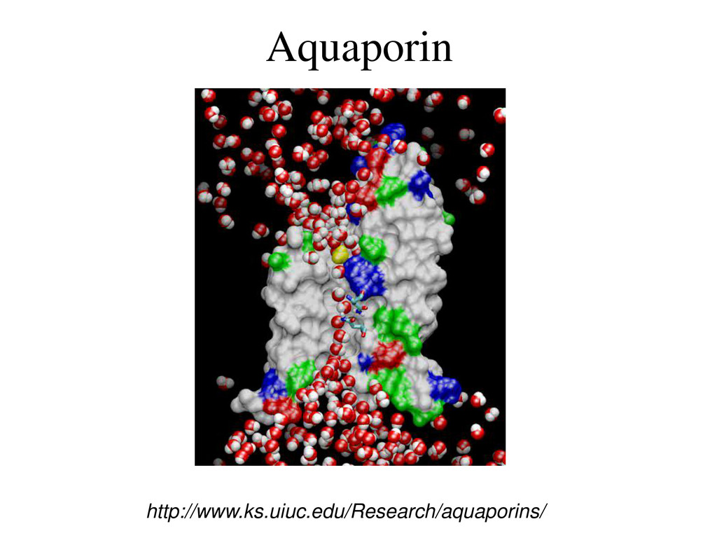 Aquaporin http://www.ks.uiuc.edu/Research/aquap...