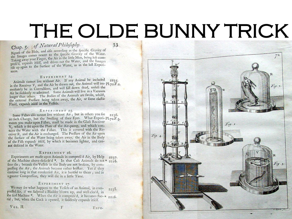 THE OLDE BUNNY TRICK