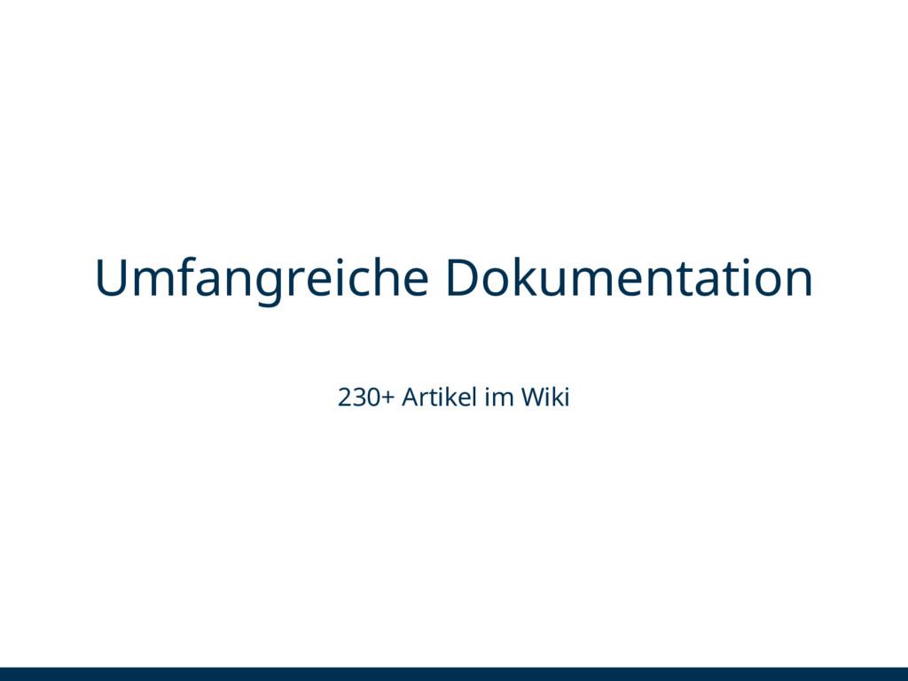 Umfangreiche Dokumentation 230+ Artikel im Wiki
