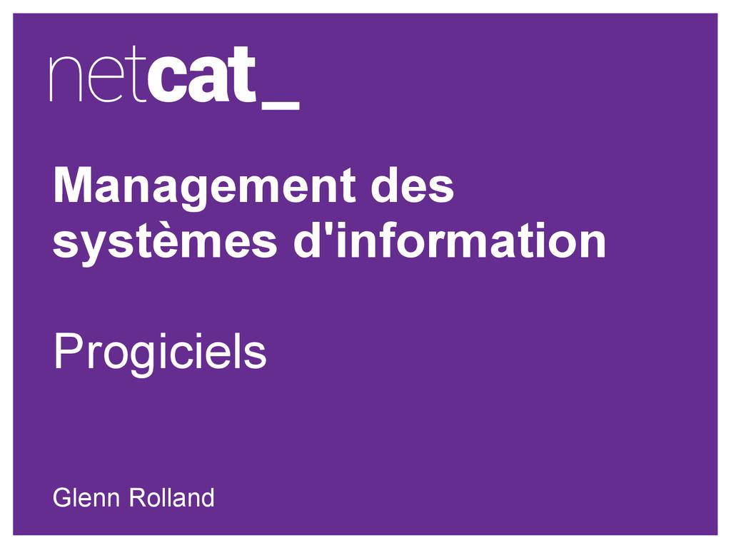 Management des systèmes d'information Progiciel...