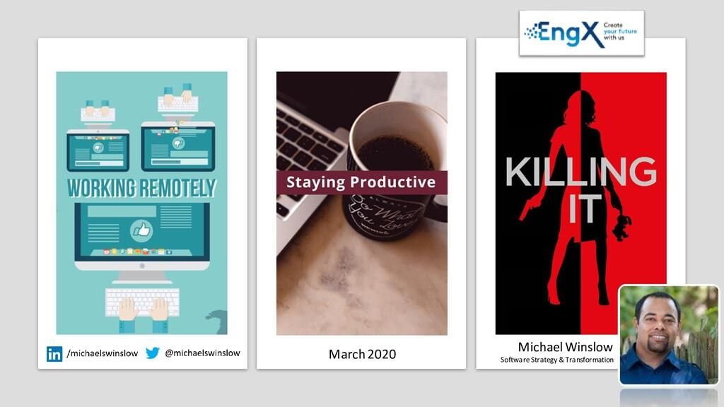 Michael Winslow Software Strategy & Transformat...