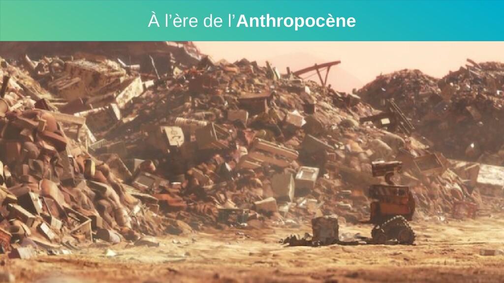 À l'ère de l'Anthropocène