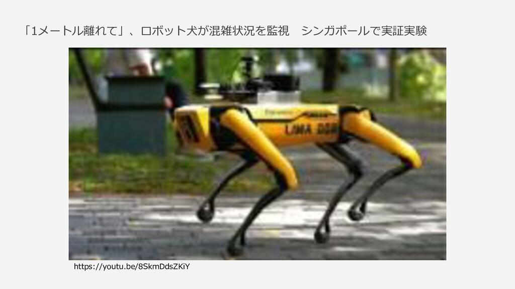 「1メートル離れて」、ロボット犬が混雑状況を監視 シンガポールで実証実験 https://yo...